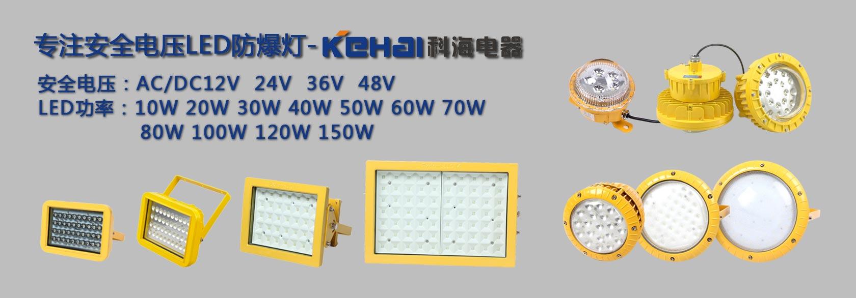 AC36V低压LED防爆灯